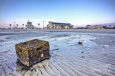 Crab Traps Photograph - Crab Trap Washed Ashore by Joan McCool