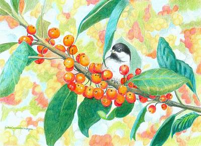 Chickadee Drawing - Crabapples With Chickadee by JoAnn   Morgan