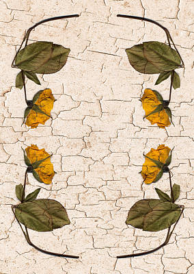 Abstract Graphics - Cracked flowers by Steve Ball