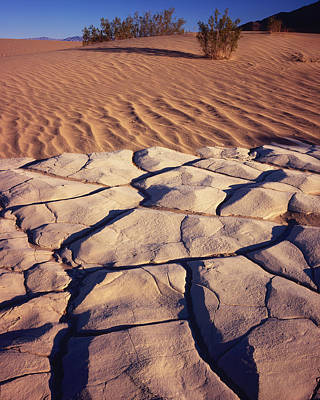 Photograph - Cracked Mud - Sand Ripples 1 by Tom Daniel