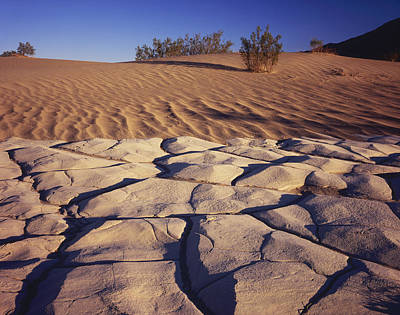 Photograph - Cracked Mud - Sand Ripples by Tom Daniel