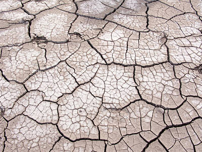 Photograph - Cracked Salt-mud In Utah by Michael Flood