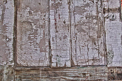 Photograph - Crackled Door by Audreen Gieger