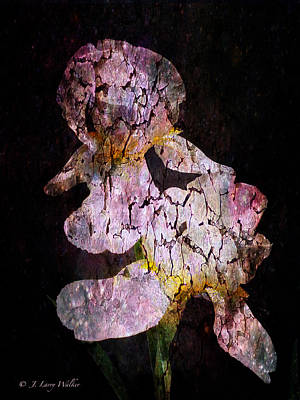 Digital Art - Crackled Iris Abstract by J Larry Walker