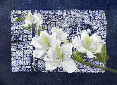 Digital Art - Crackled White Flowers by Francesa Miller