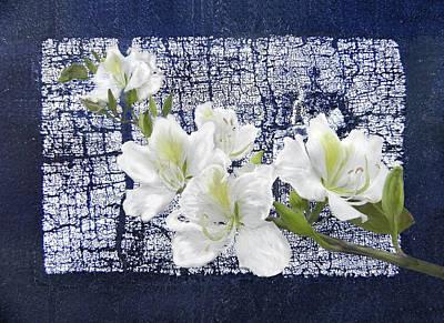Digital Art - Crackled White Flowers by Francesa Miller