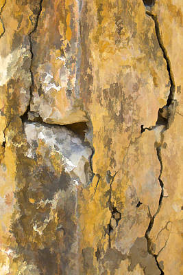 Photograph - Cracks In The Wall by David Letts