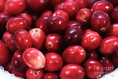 Photograph - Cranberries by John Rizzuto