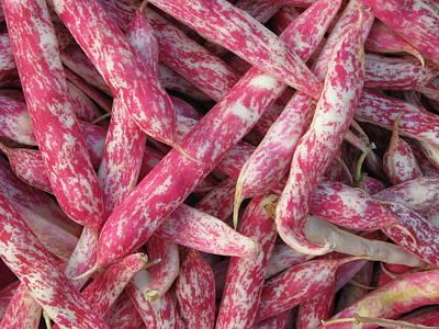 Cranberry Beans Art Print