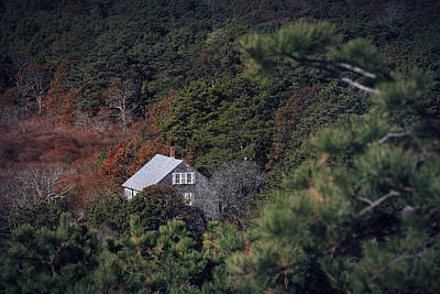 Cape Estate Photograph - Cranberry Bog House Truro Ma by Dapixara Art
