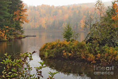 Meadow Photograph - Cranberry Meadows Forever by Charles Kozierok