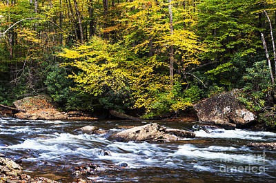 Cranberry River In Fall Color Art Print