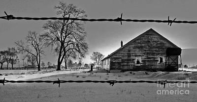 Buckaroo Photograph - Crane House by Michele AnneLouise Cohen