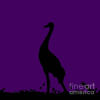 Photograph - Crane In Grape by Anita Lewis