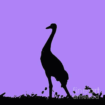 Photograph - Crane In Purple by Anita Lewis