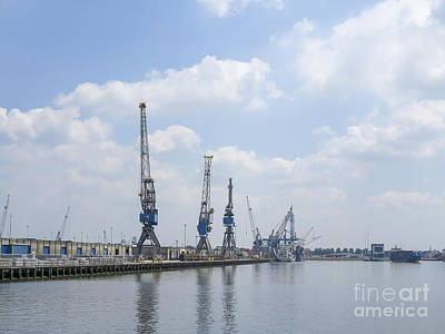 Photograph - Cranes In Harbor by Patricia Hofmeester