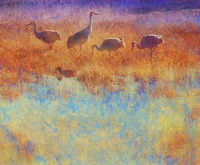 Cranes In Soft Mist Print by R christopher Vest