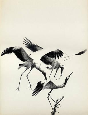 Drawing - Cranes by Mamoun Sakkal