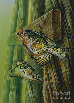 Crappie And Bridge Support Art Print by Jon Q Wright