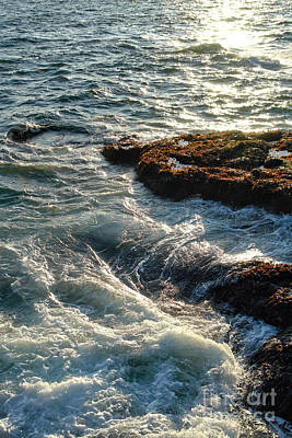Maine Shore Photograph - Crashing Waves by Olivier Le Queinec