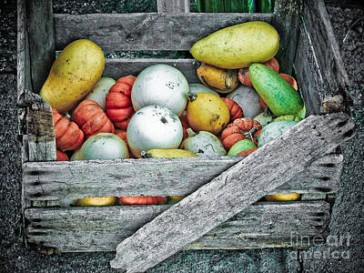 Hay October Photograph - Crate Of Gourds  by Jt PhotoDesign