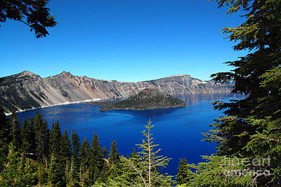 Photograph - Crater Lake And Pine Trees by Debra Thompson