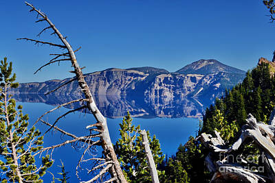 Photograph - Crater Lake Rim by Ansel Price