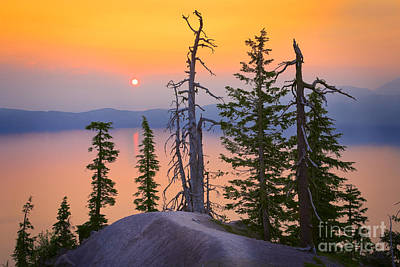 Crater Lake Trees Art Print by Inge Johnsson