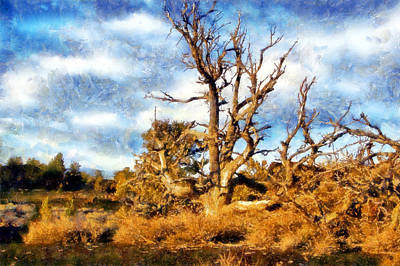 Digital Art - Craters Of The Moon Tree by Kaylee Mason