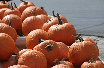 Ga Photograph - Crates Of Pumpkins by Cathy Lindsey
