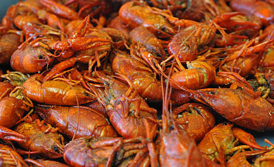 Crawfish Boil Art Print by Steve Archbold