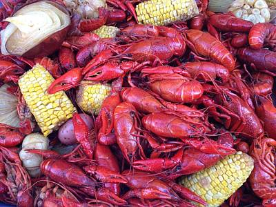 Photograph - Crawfish Time In Louisiana by Katie Spicuzza