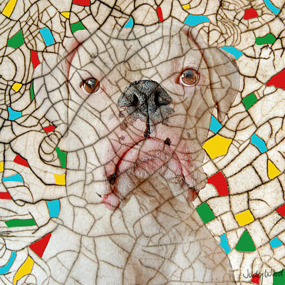 Boxer Dog Digital Art - Crazed by Judy Wood