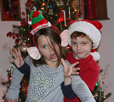 Photograph - Crazy Christmas by Denise Romano