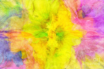 Flora Photograph - Crazy Daisies Abstract 2 by Andee Design