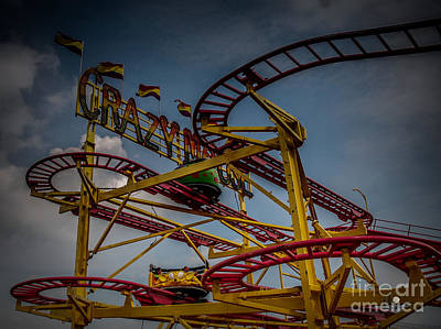 Photograph - Crazy Mouse by Ronald Grogan