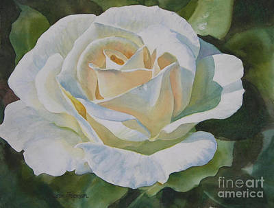 Detail Floral Painting - Creamy Rose by Sharon Freeman