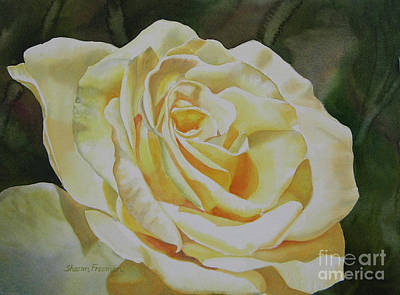 Realistic Flower Painting - Creamy Yellow Rose by Sharon Freeman