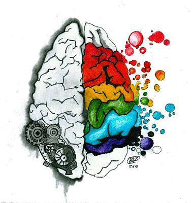 Human Brain Drawing - Creative Brain by Becca Fieken