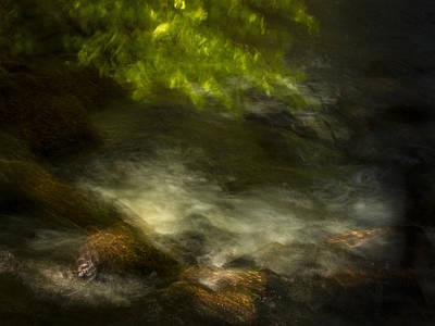 Sk Stones Photograph - Creek At Spring by Peter Samuelsson