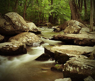 Photograph - Creek At St. Peters by Michael Porchik