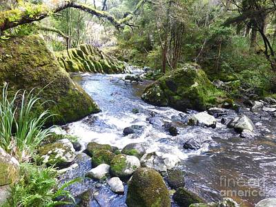 Photograph - Creek At Wairere Boulders by Dianne  Connolly