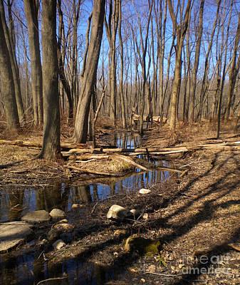 Creek At Woodland Park Original