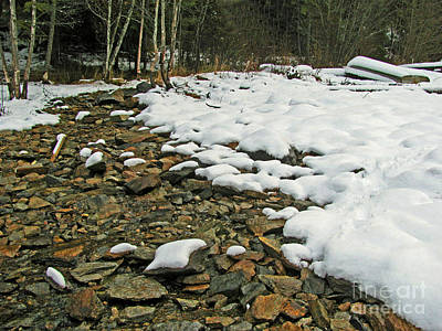 Photograph - Creek Bed by Leone Lund