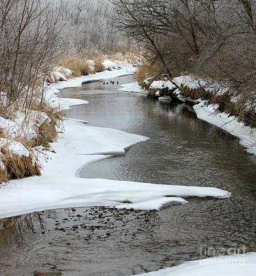 Photograph - Creek by Debbie Hart