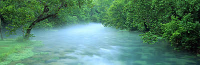 Ozark Photograph - Creek Flowing Through A Forest, Ozark by Panoramic Images
