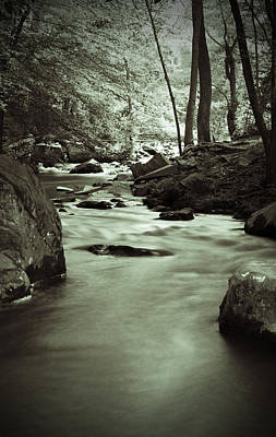 Photograph - Creek In Black And White by Michael Porchik