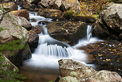 Photograph - Creek In Maine Img 6377 by Greg Kluempers