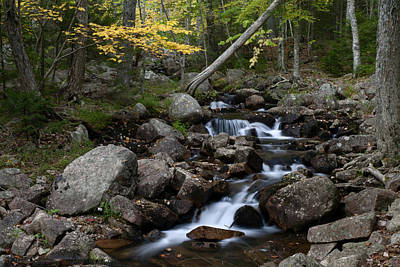 Photograph - Creek In Maine Img 6383 by Greg Kluempers