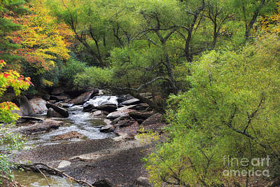 Photograph - Creek In The Fall by Jill Lang